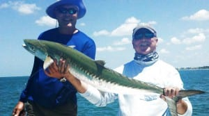 kingfish charters tampa,clearwater fishing charters,fishing guides clearwater