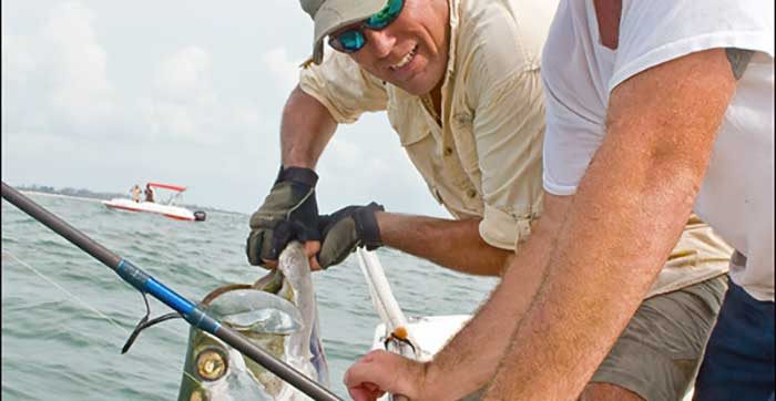 fishung guide in tampa florida holding tarpon boat side by mouth